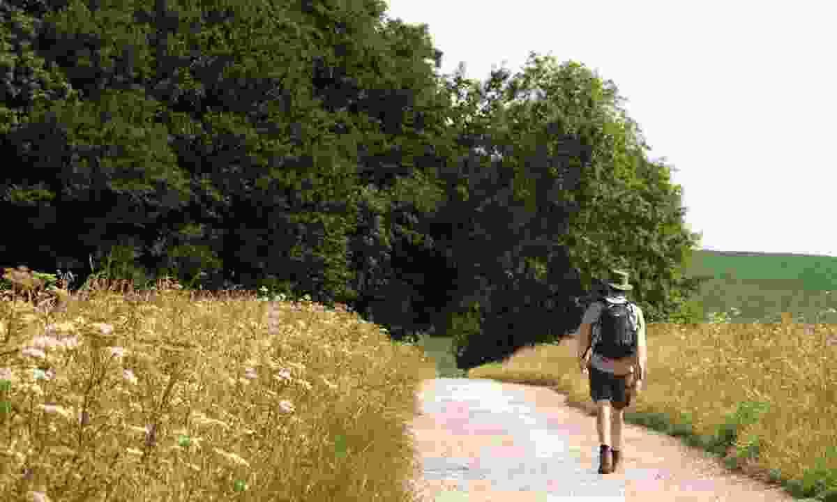 Walking near Hackpen Hill (Nick Smith/greatwestway.co.uk)