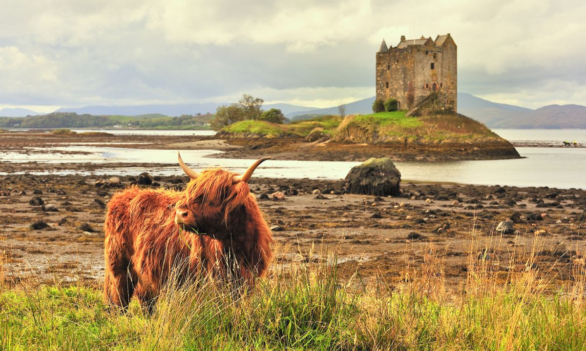 7 of the Best Tours Through Breathtaking Scotland for 2019/2020