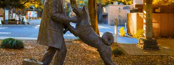 Hachiko and owner (Dreamstime)