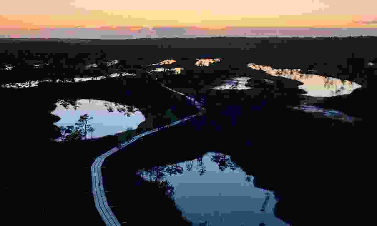 Sunset over Kemeri  Bog (Peter Moore)