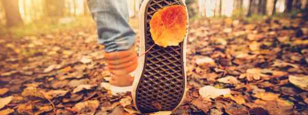 Walking in autumn (Shutterstock)