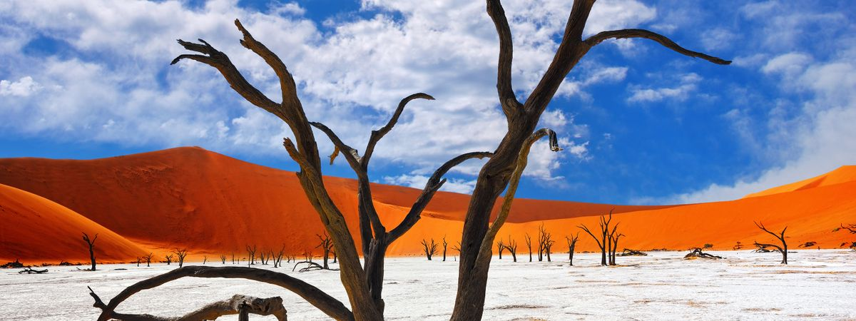 A dune a day: 7 breathtaking adventures in stunning Namibia