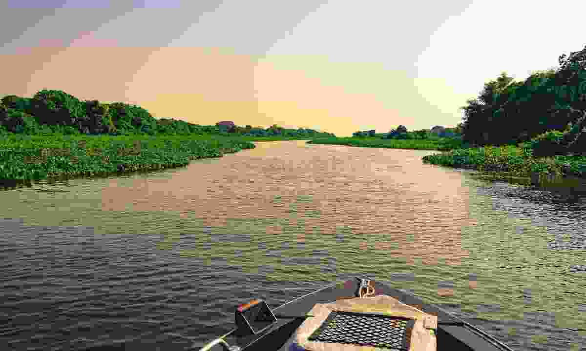 A boat navigates through the Pantanal, Brazil (Dreamstime)