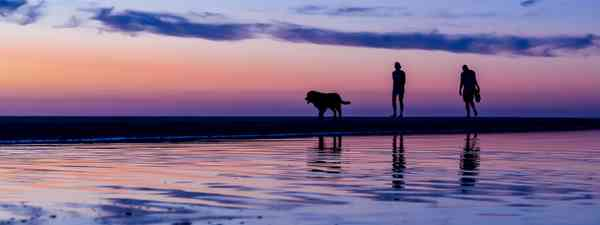 Silhouetted couple walking the dog on the beach at sunset, Noordwijk, The Netherlands (Dreamstime)