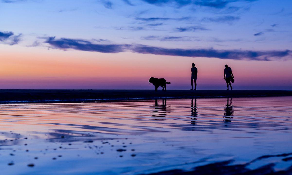 Dog Friendly Botswana