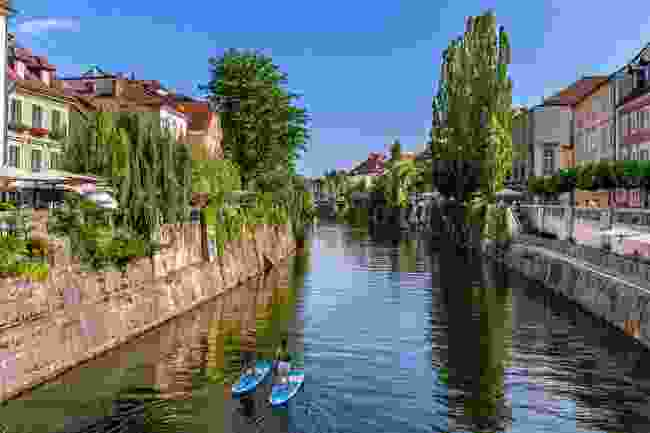 Stand-up paddleboarders on the Ljubljanica river (Andrej Tarfila)