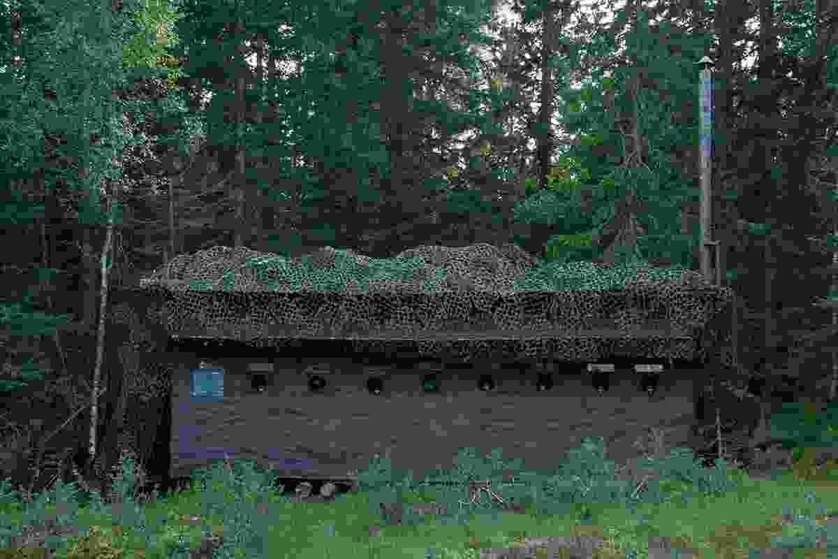 A bear hide (Håkan Vargas/Wild Sweden)