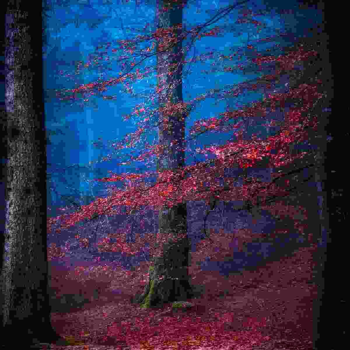 Supernatural – Into the mystic (Matt Anderson)