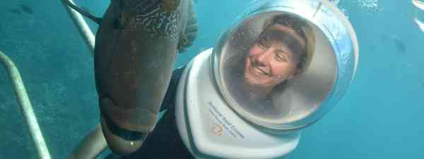 Phoebe Smith with Wally (Sunlover Reef Cruises)