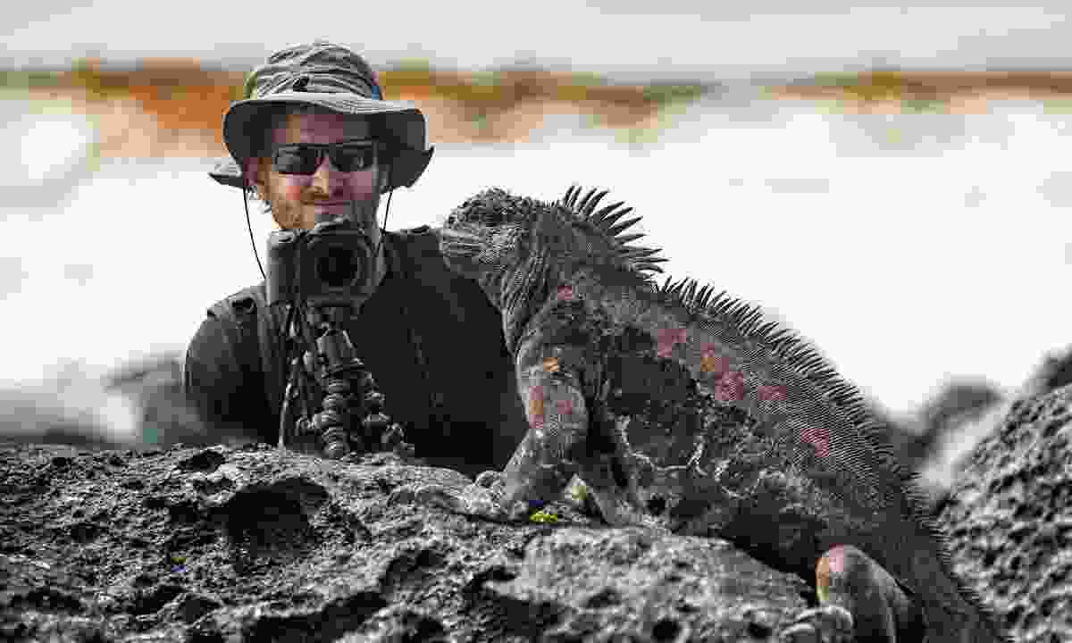 Photographing iguanas on the Galápagos Islands (Shutterstock)