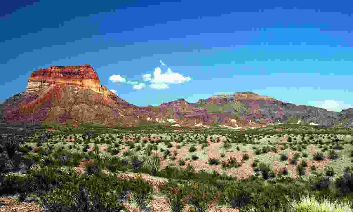 The Big Bend National Park (Shutterstock)