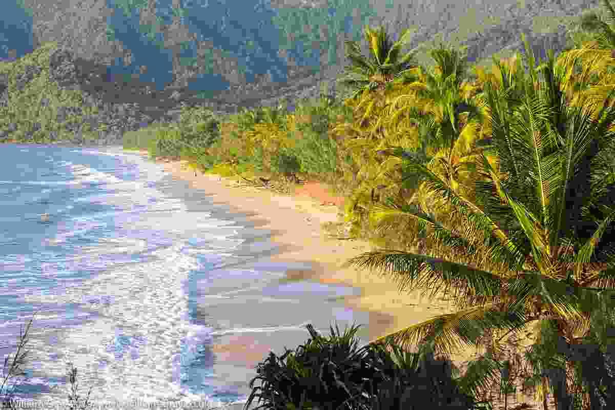 Oak Beach, near Port Douglas, Queensland (William Gray)