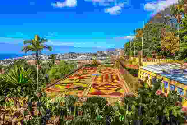 The famous botanical conservatory garden in Funchal, Madeira, Portugal (Shutterstock)