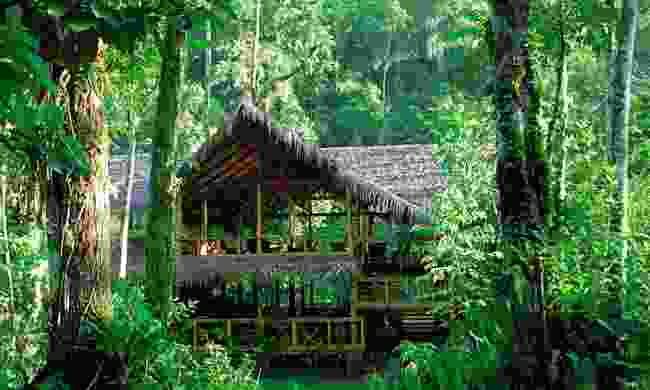 A lodge hidden amongst shrubbery (Pacuare Lodge)