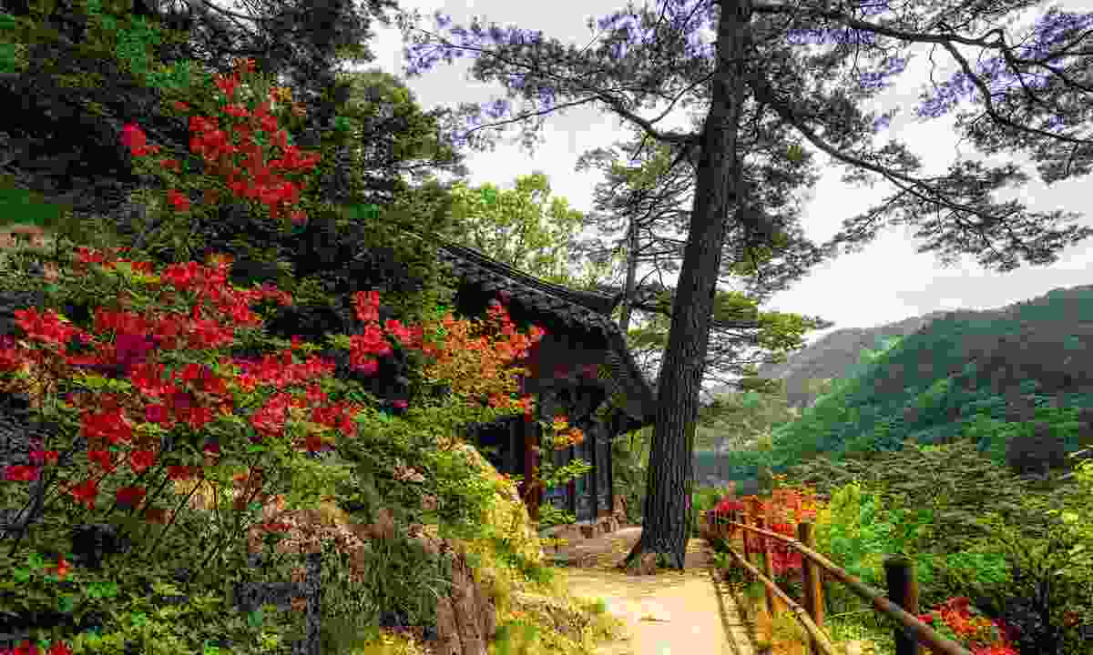 Odaesan National Park, South Korea (Dreamstime)