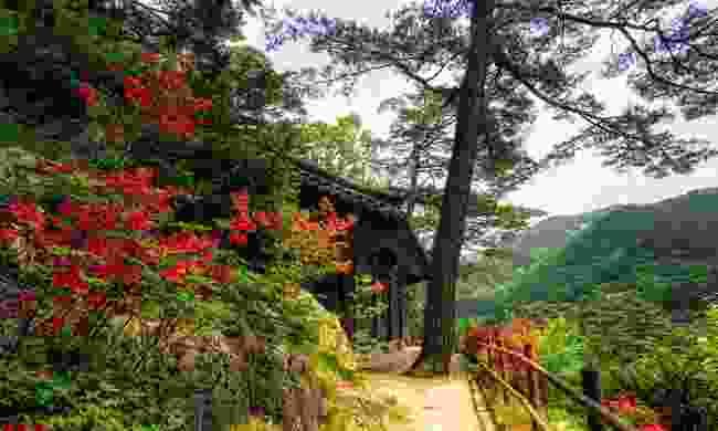 Odaesan National Park, South Korea (Dreamstime)