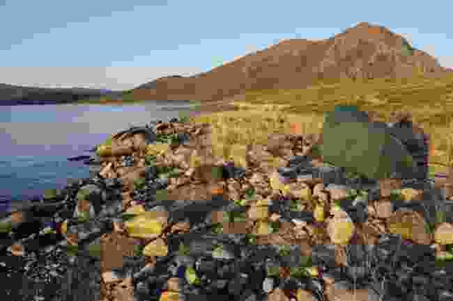 Camping by Kangerluatsiarsuaq lake (Phoebe Smith)