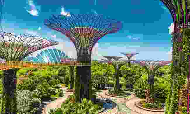 Explore the Gardens by the Bay, Singapore (Shutterstock)