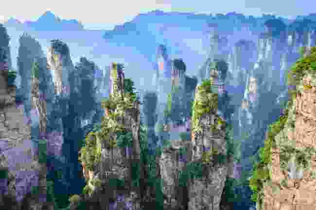 Explore the otherworldly mountains of Zhangjiajie National Forest Park (Shutterstock)