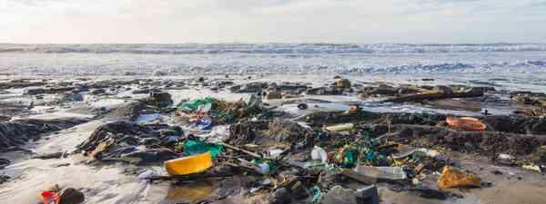 Litter on a French beach (Shutterstock)