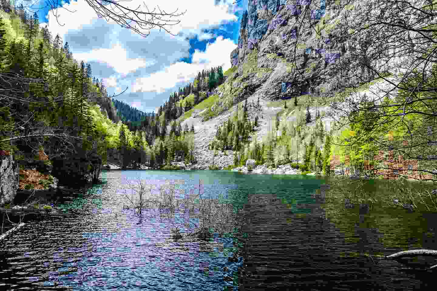 The Black Lake, one of the lowest in the region, in Slovenia (Shutterstock)