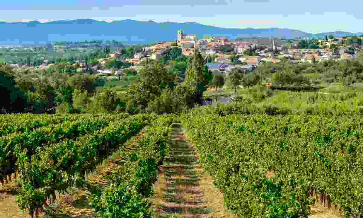 Languedoc vineyards around Beziers (Dreamstime)