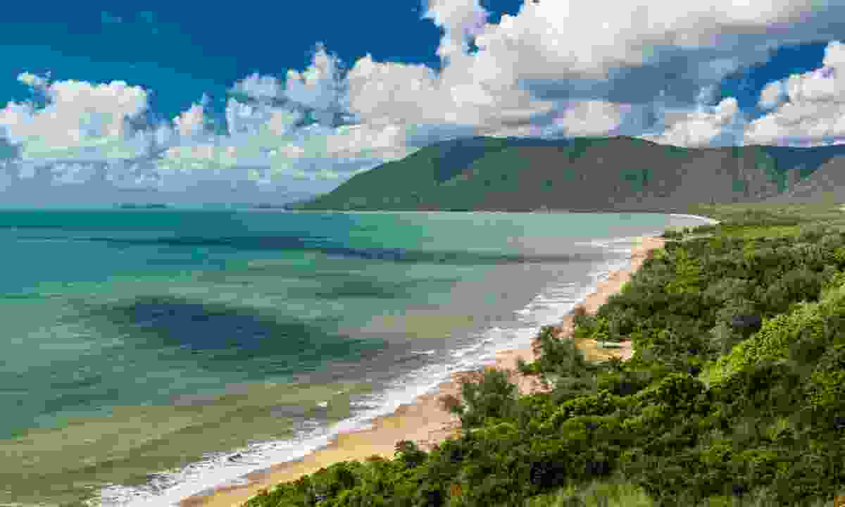 Cape Tribulation in the Daintree National Park (Dreamstime)