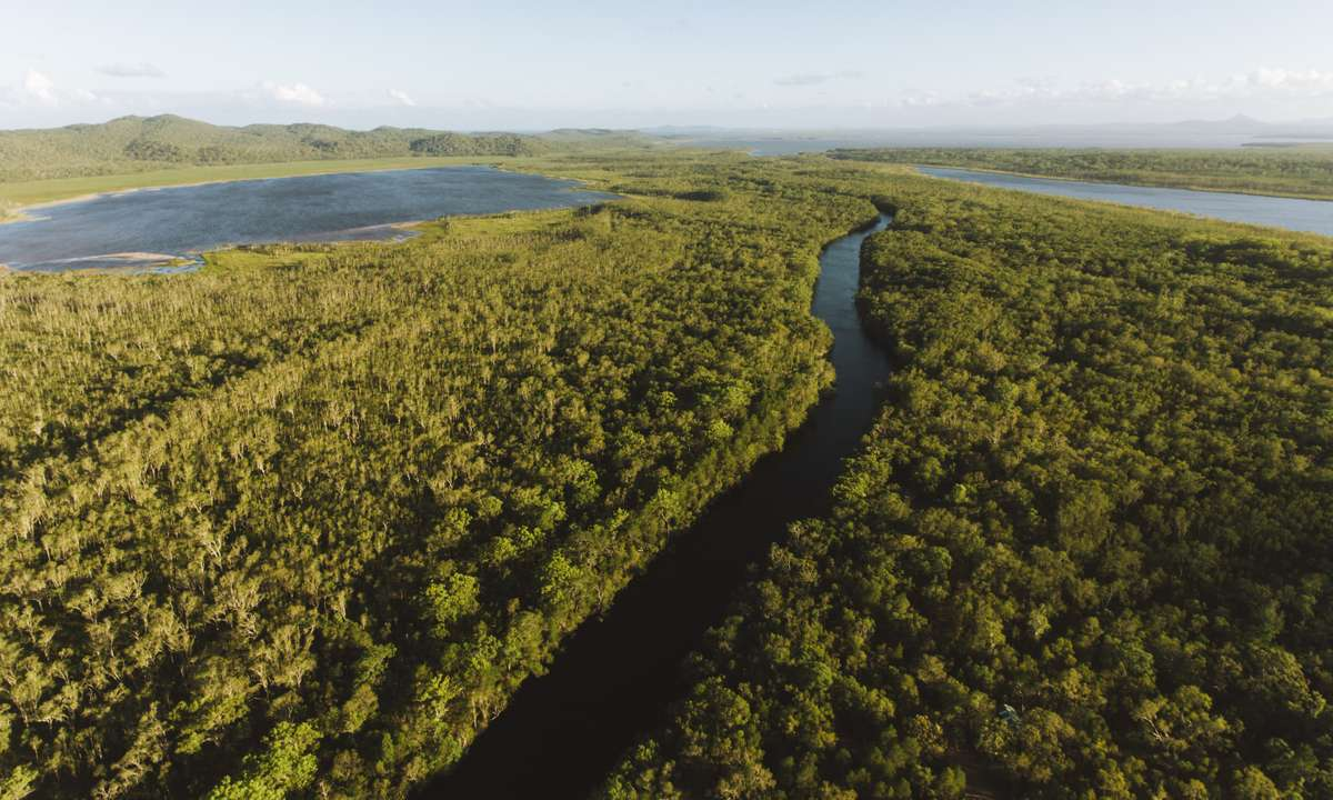 The Noosa Everglades (Tourism and Events Queensland)