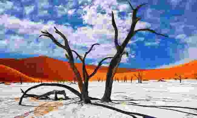 Namibia won big at last year's Reader Travel Awards (Shutterstock)