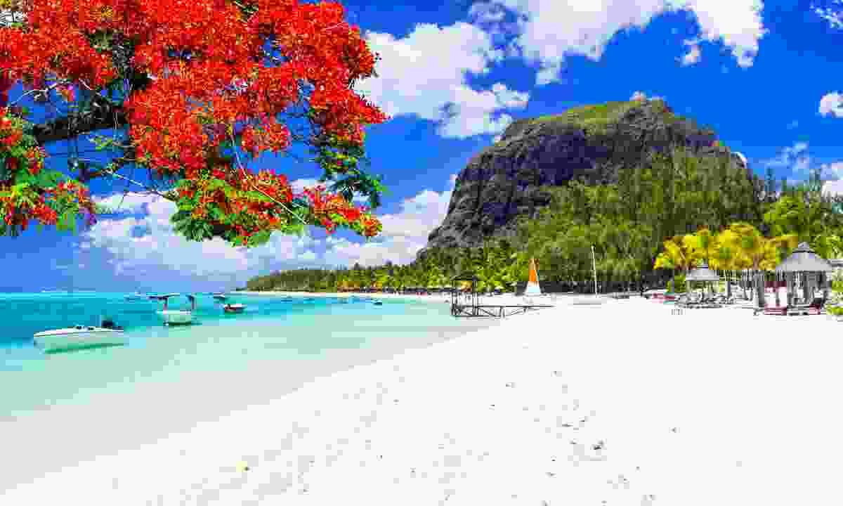 A spectacular Mauritian beach (Shutterstock)