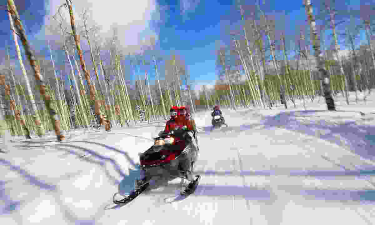 Hop on a snowmobile and zoom along forests at an exhilarating speed (Dreamstime)