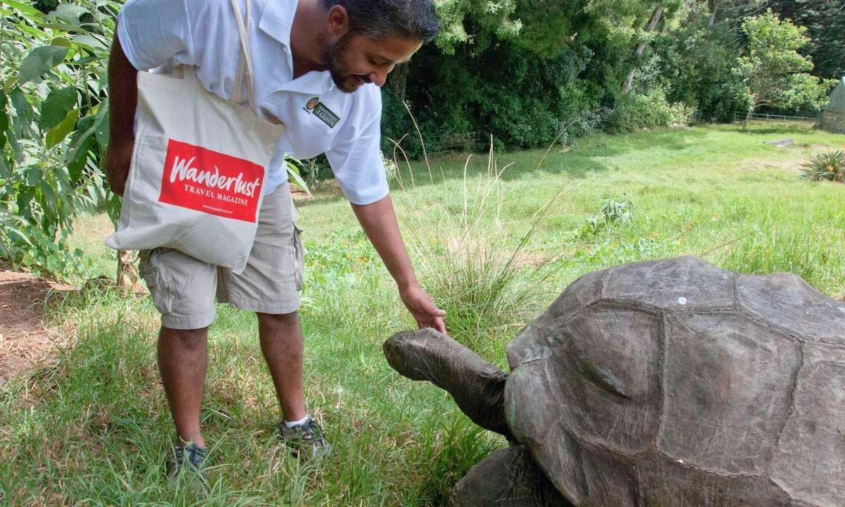 Meeting Jonathan, the world's oldest living land animal (Lyn Hughes)