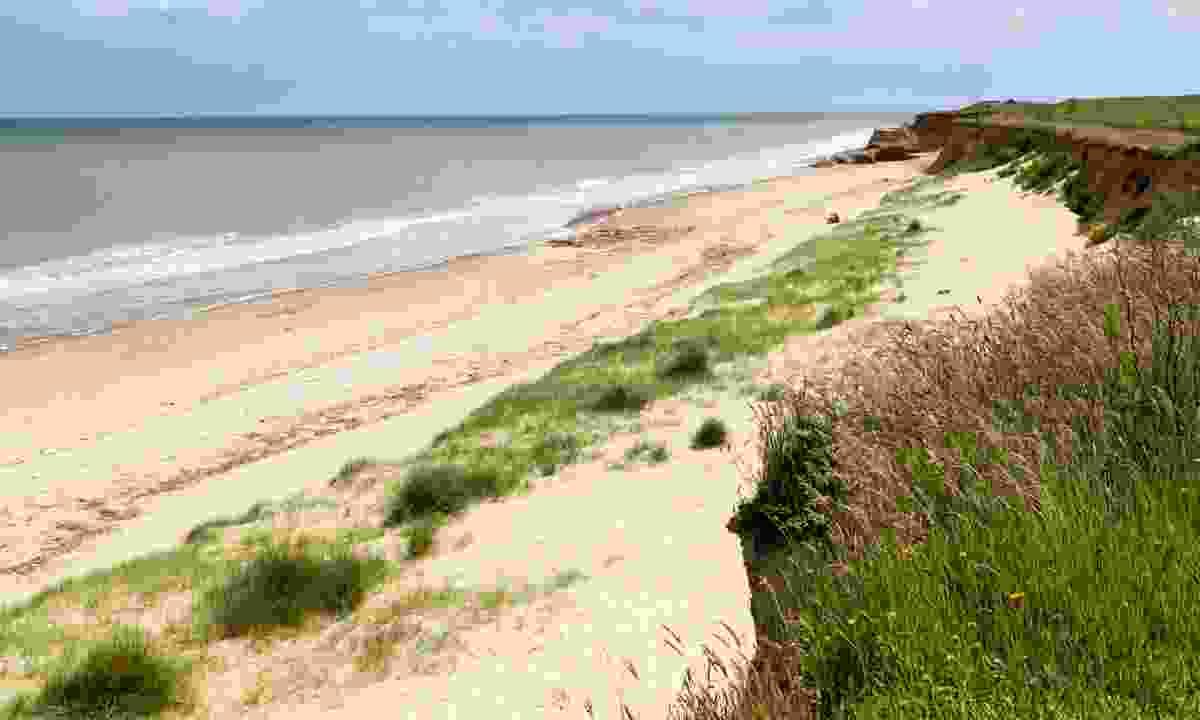 Happisburgh Beach, North Norfolk (Dreamstime)