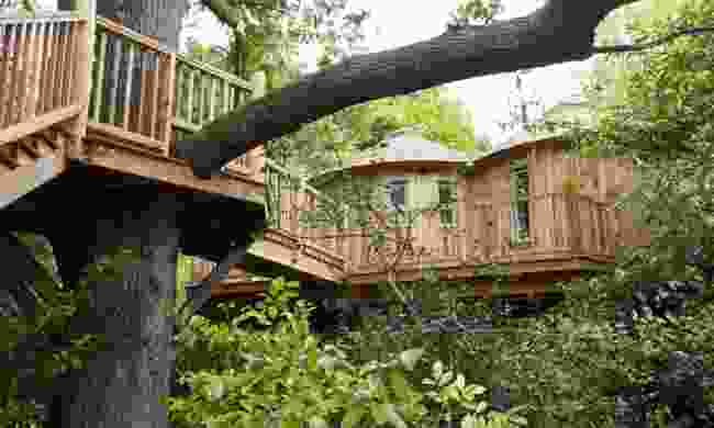 The Treehouse at Harptree Court, Somerset (Canopy & Stars)