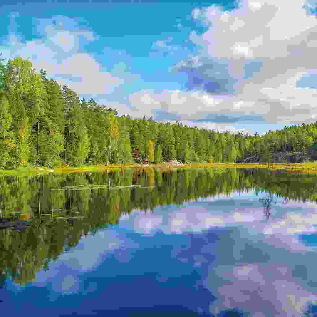 Nuuksio (Shutterstock)
