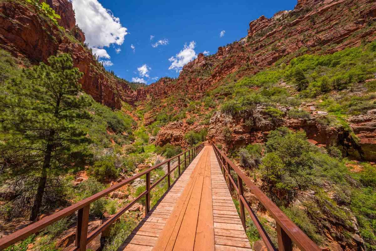 North Kaibab Trail, USA. (Shutterstock)
