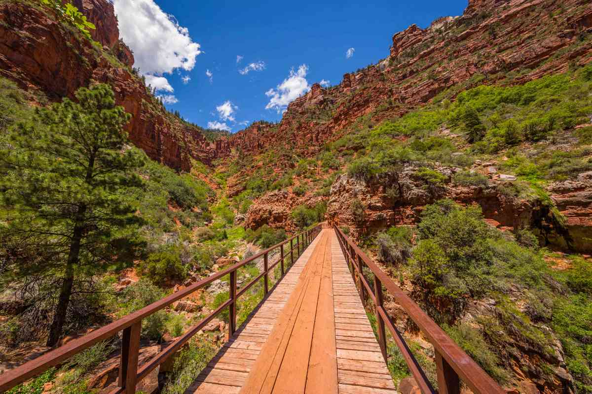 North Kaibab Trail, USA. (Shutterstock)
