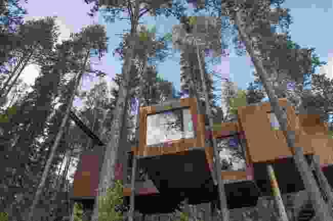 Sleep in a treehouse in Harads (Shutterstock)