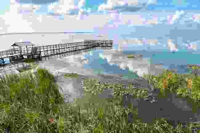 Lake Apopka, Florida (Shutterstock)