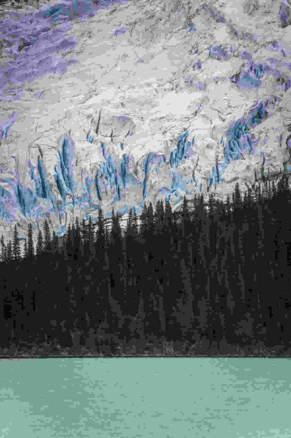 Layers of Robson, Berg Glacier (Paul Zizka)