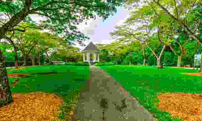 The UNESCO-listed Botanic Gardens celebrate their 160th birthday in 2019 (Dreamstime)