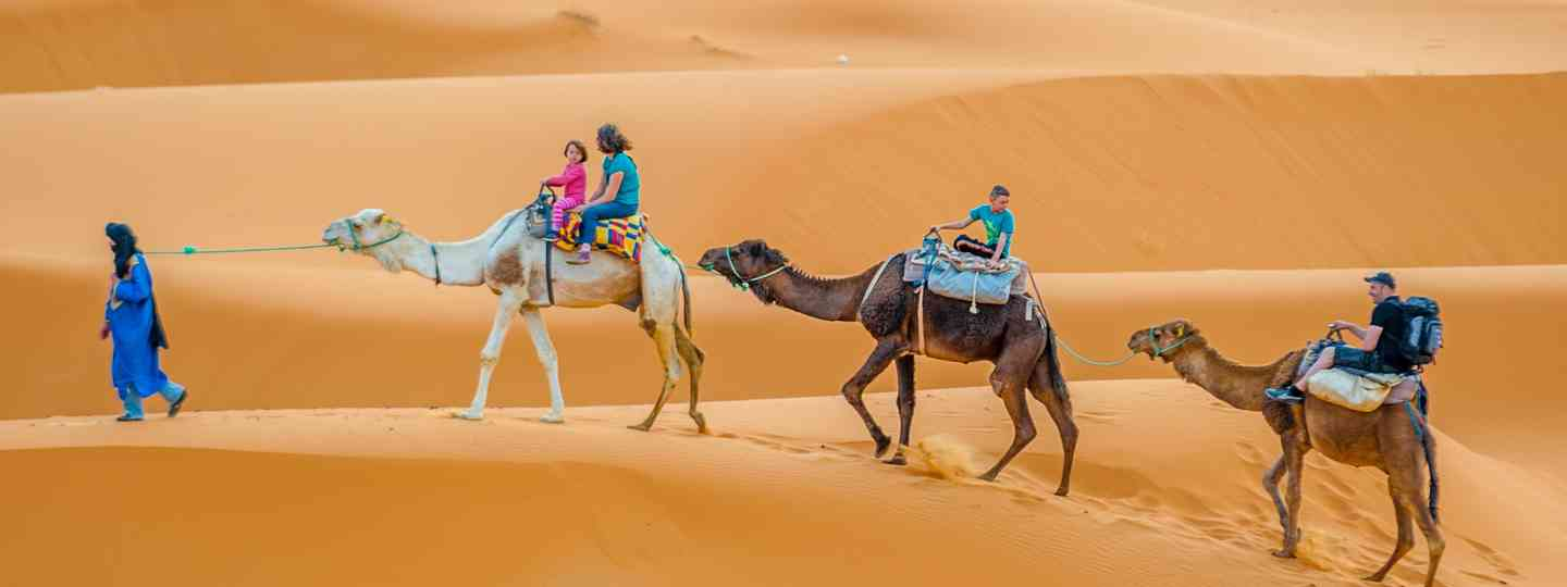 Camel trek in Morocco (Dreamstime)