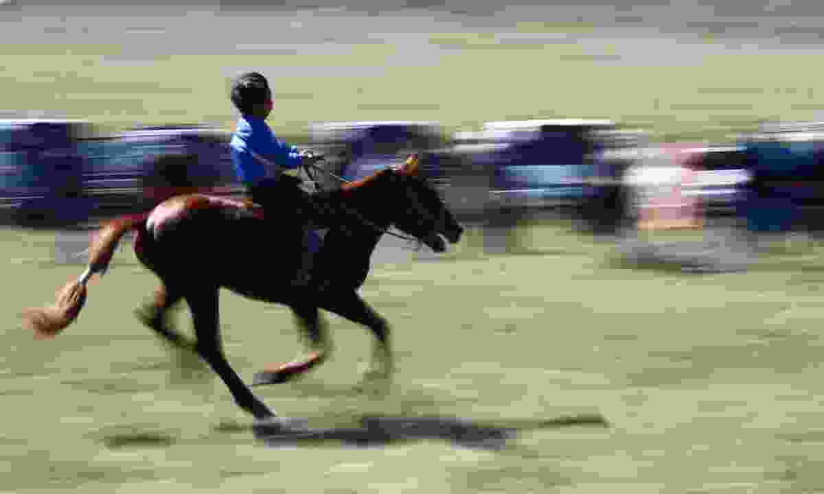 Young jockey racing during the Naadam Festival (Dreamstime)