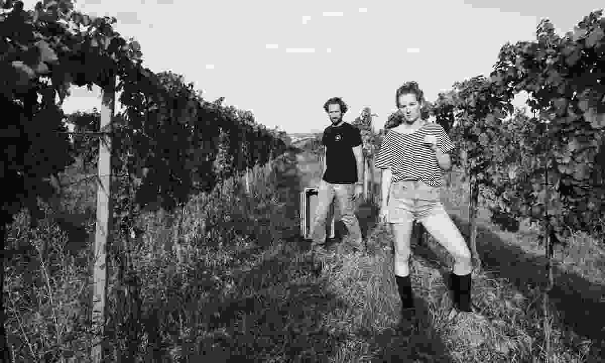 Eduard & Stephanie Tscheppe in their vineyard in Burgenland (Gut Oggau)