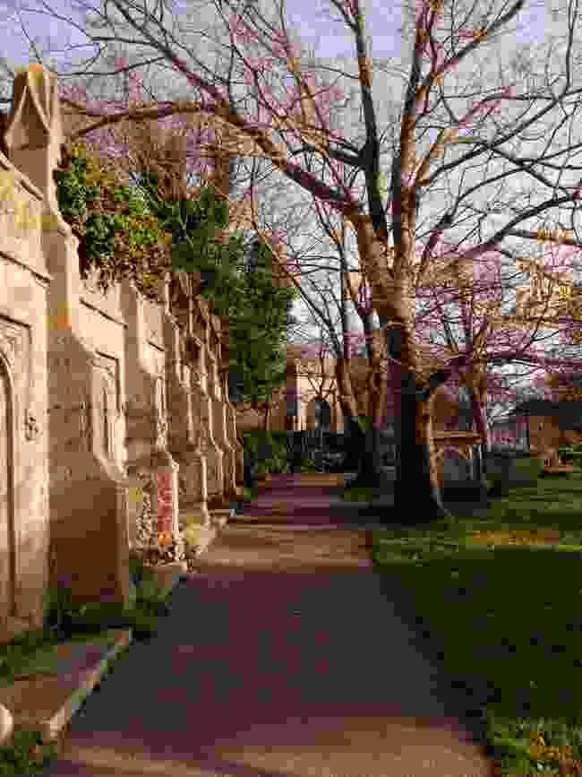 The reassuringly Gothic St Nicholas Rest Gardens (Alexandra Loske)