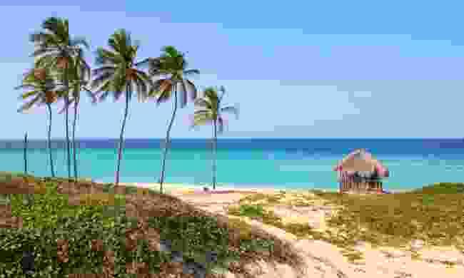 Playa Megano in Playas del Este (Dreamstime)