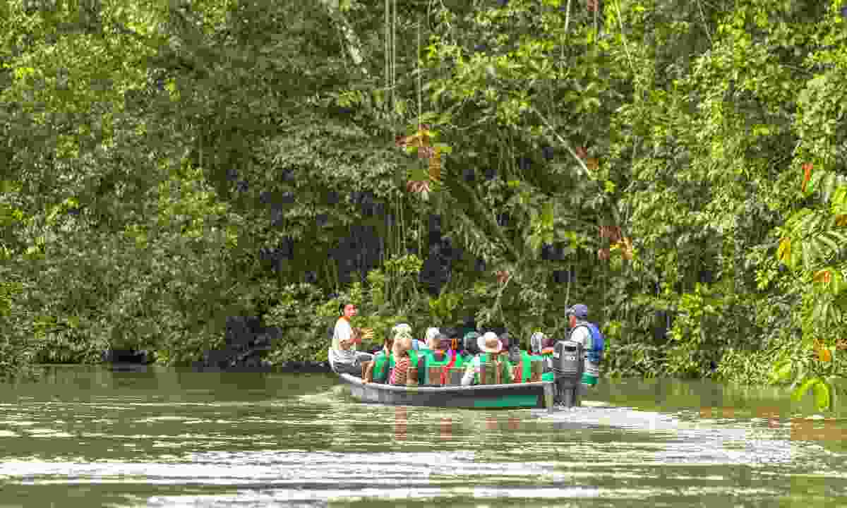 Heading down river in the Amazon, where clinics providing rabies protecting are not readily available (Dreamstime)