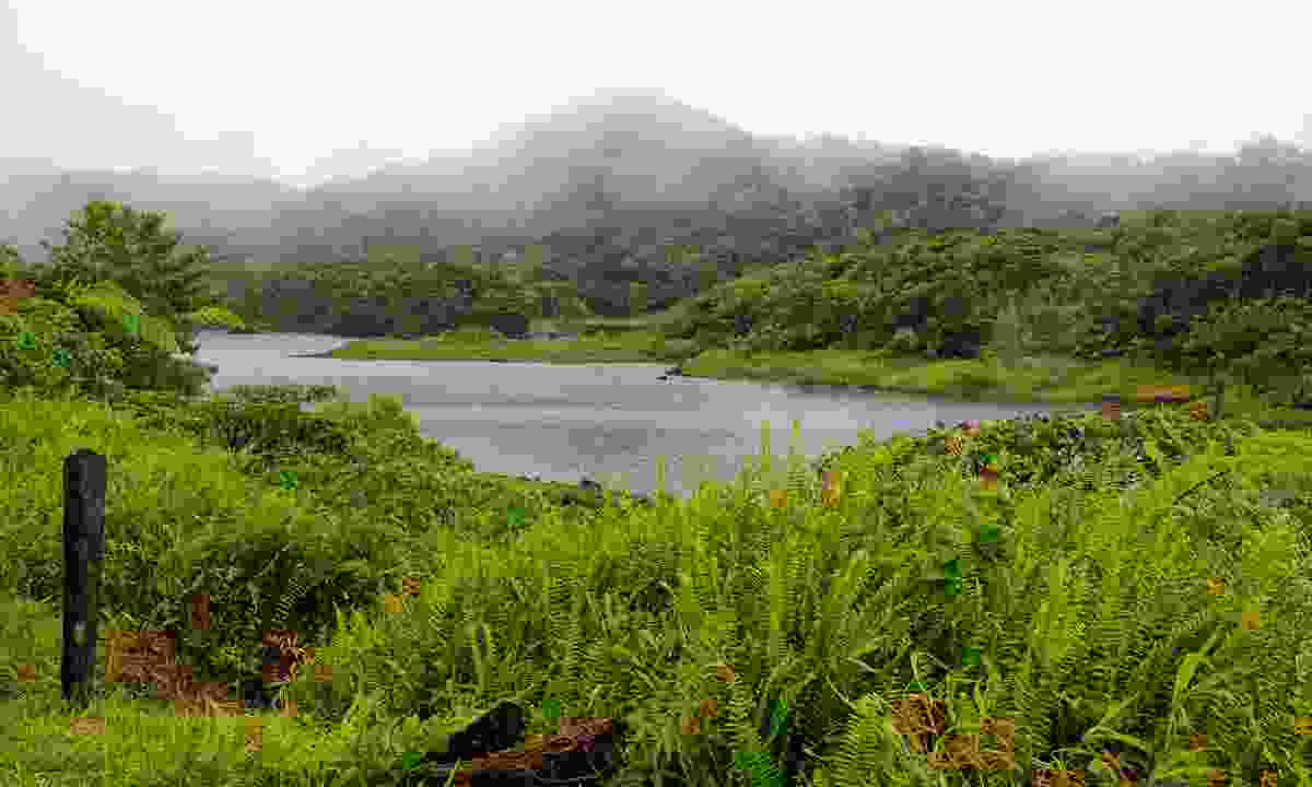 Circle the beautiful Freshwater Lake in just an hour (Dreamstime)