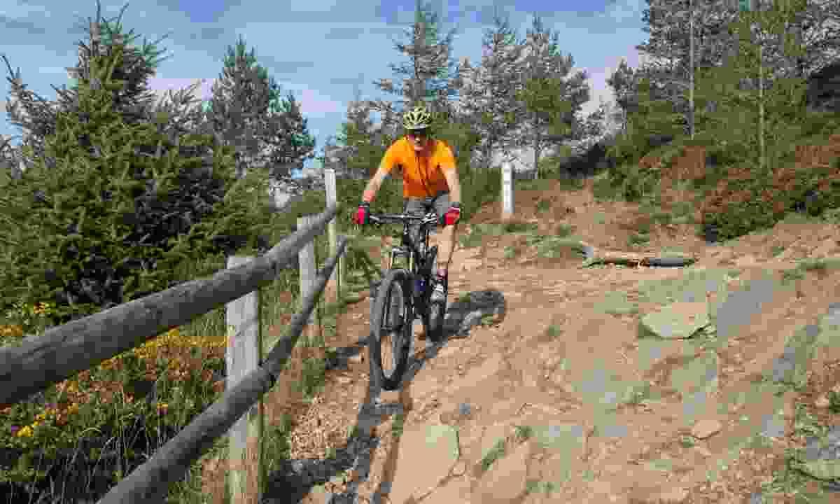 Mountain biking in South Wales (Shutterstock)