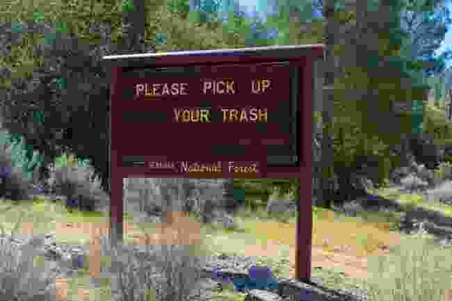 In Seqouia National Forest, California, litter is always called out (Shutterstock)